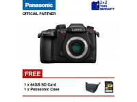 Panasonic Lumix G DC-GH5S Mirrorless Camera (Body)